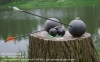 NATUR'BALL NB1